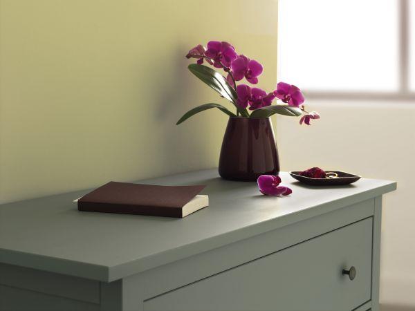 Malowanie mebli drewnianych kryjącymi farbami
